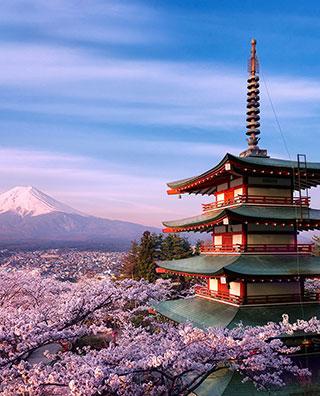 Japonya Güney Kore Turu